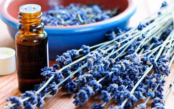 Чистые органические экстракты и масла, сертифицированные независимой экологической организацией ECOCERT